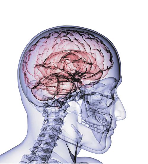 Brain Xray2 Hex
