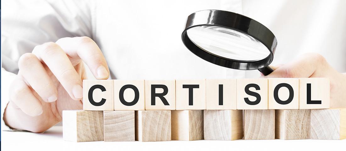 Cortisol N E